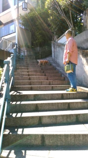 乙女山公園に散歩・・・続き1_c0162773_00324897.jpg