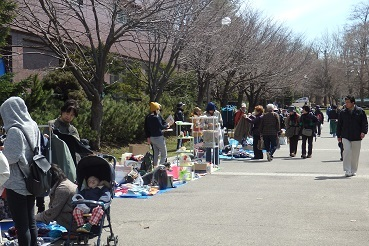 4月23日12:30頃、札幌の中島公園で狐(?)を見ました。_f0362073_23085962.jpg