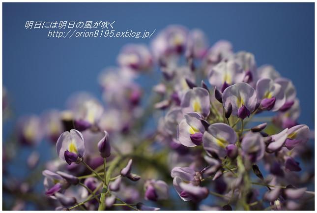 f0361079_09331385.jpg