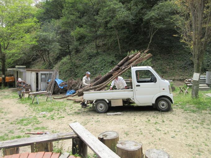 みさき里山クラブ定例活動日・・・孝子の森  by  (ナベサダ)_f0053885_20195757.jpg