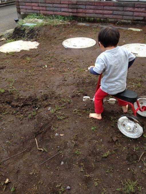 庭4年目。庭づくりをふりかえる①_e0375293_10255658.jpg