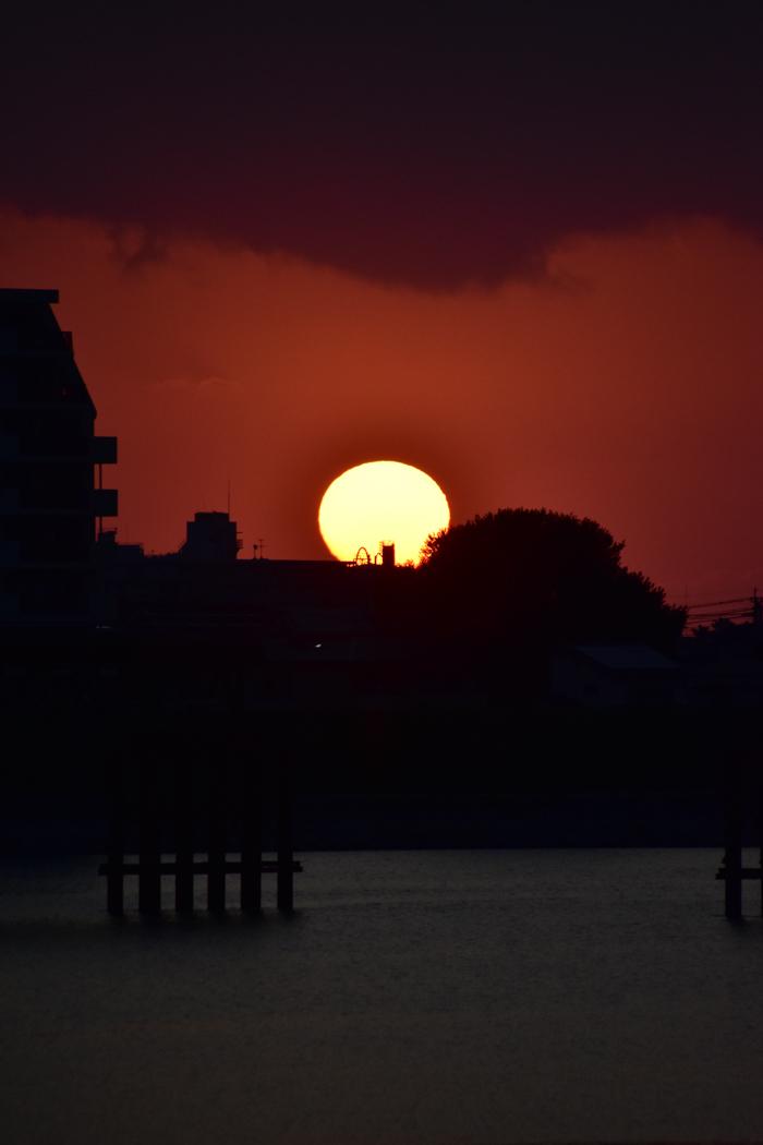 じわじわ早起きになる季節です (*^_^*)_c0049299_22025912.jpg