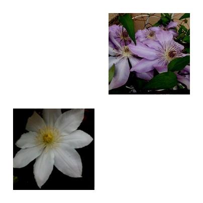 b0352112_16284185.jpg
