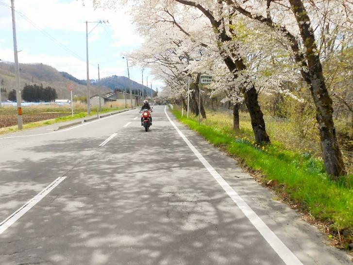 春の山形路は 素敵がいっぱい!_c0261447_20351989.jpg