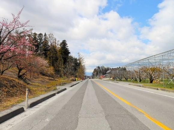 春の山形路は 素敵がいっぱい!_c0261447_20455751.jpg