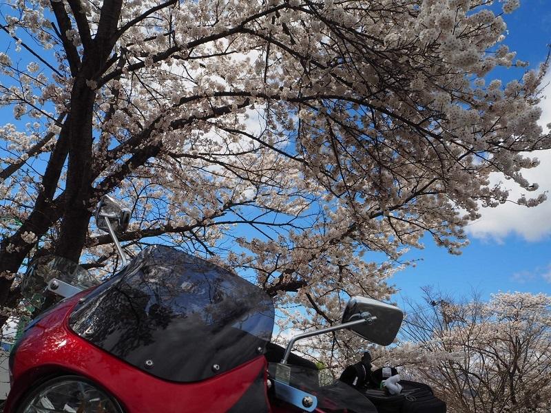春の山形路は 素敵がいっぱい!_c0261447_21341182.jpg