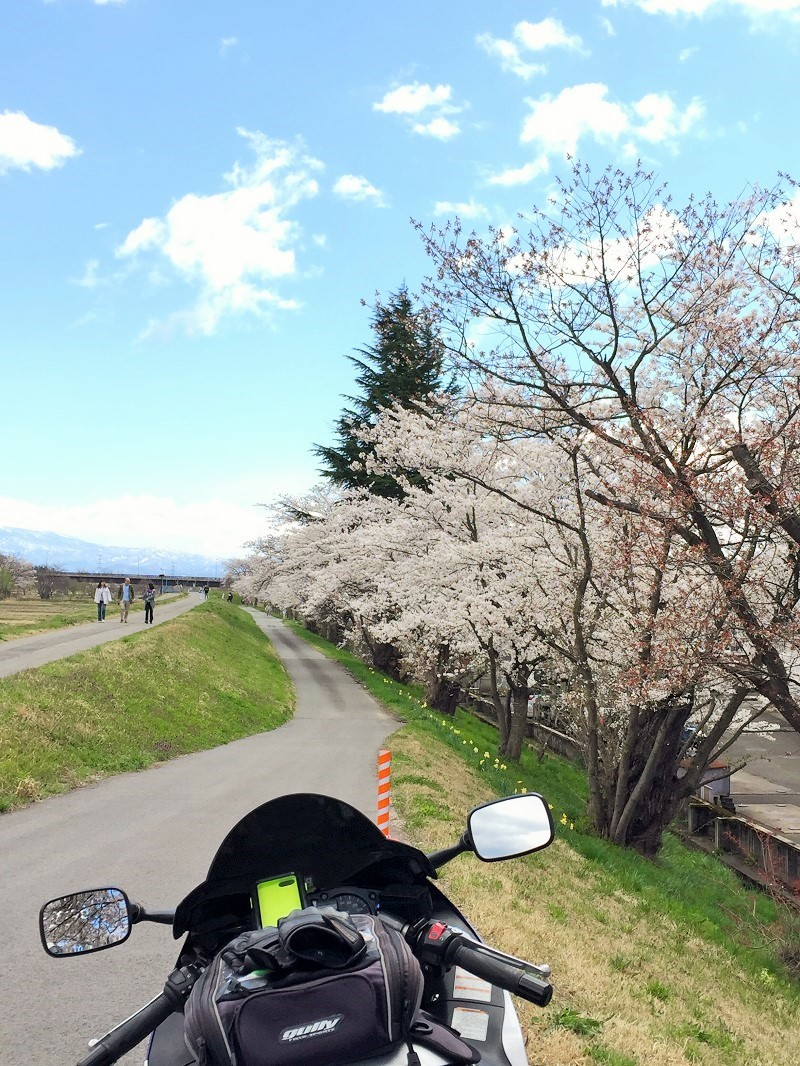 春の山形路は 素敵がいっぱい!_c0261447_21344439.jpg