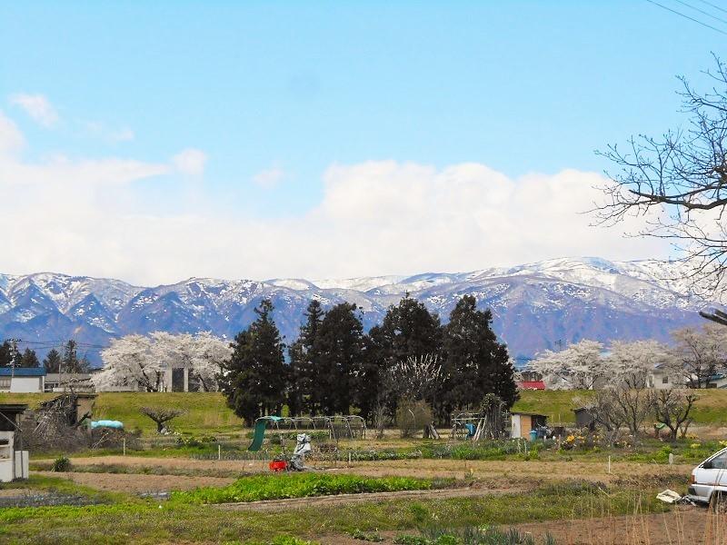 春の山形路は 素敵がいっぱい!_c0261447_22361828.jpg