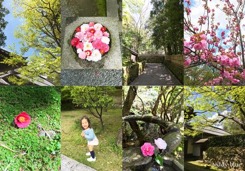 Kyoto trip  春の京都旅 洛東 _e0253364_20122944.jpg