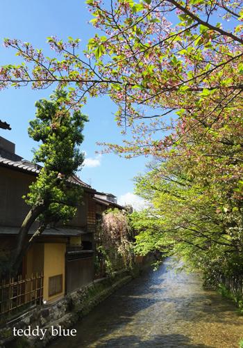Kyoto trip  春の京都旅 洛東 _e0253364_20123320.jpg