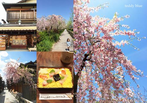 Kyoto trip  春の京都旅 洛東 _e0253364_20123796.jpg
