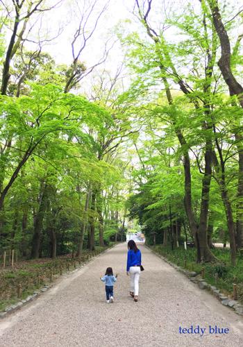 Kyoto trip  春の京都旅 洛中_e0253364_21223211.jpg