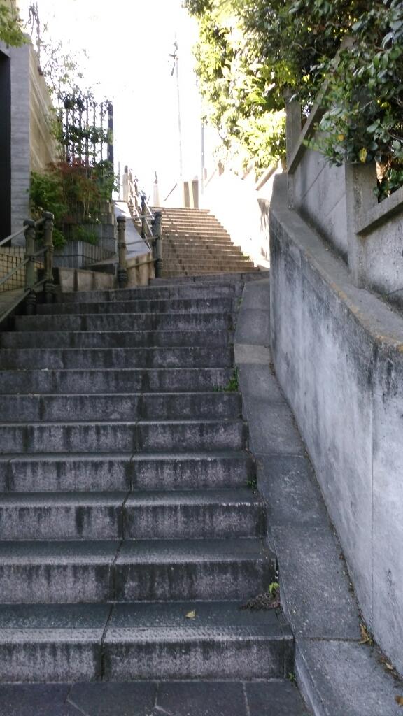 乙女山公園に散歩・・・続き2_c0162773_00094441.jpg