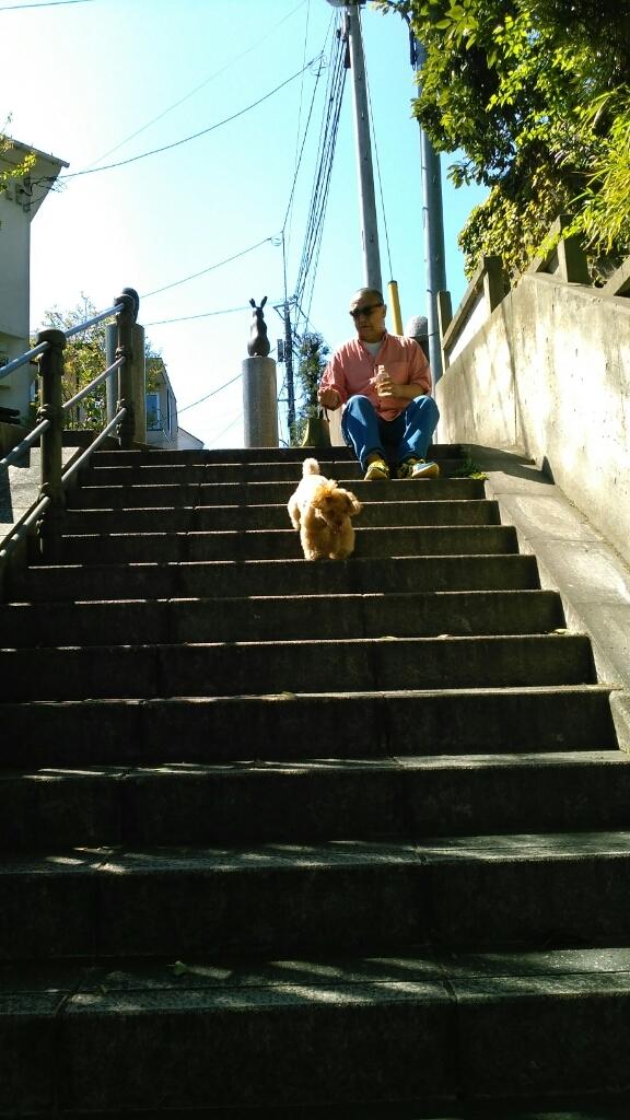 乙女山公園に散歩・・・続き2_c0162773_00095190.jpg
