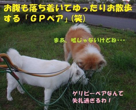 f0121712_00001344.jpg
