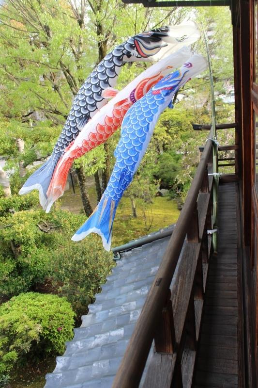 喜楽亭で楽しむ おいしい日本茶 4月_b0220318_00163884.jpg