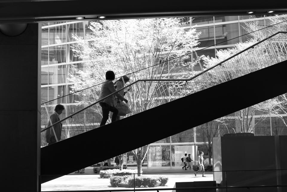 Stairs   ・・・モノクロの気分で・・・3_f0333031_06021312.jpg