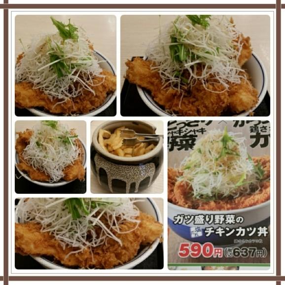 ガツ盛り野菜の塩だれチキンカツ丼@かつや♪_d0219834_14410965.jpg