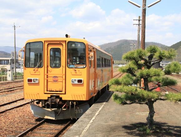 2017年 4月 樽見鉄道 春 ハイモ230_d0202264_4385439.jpg