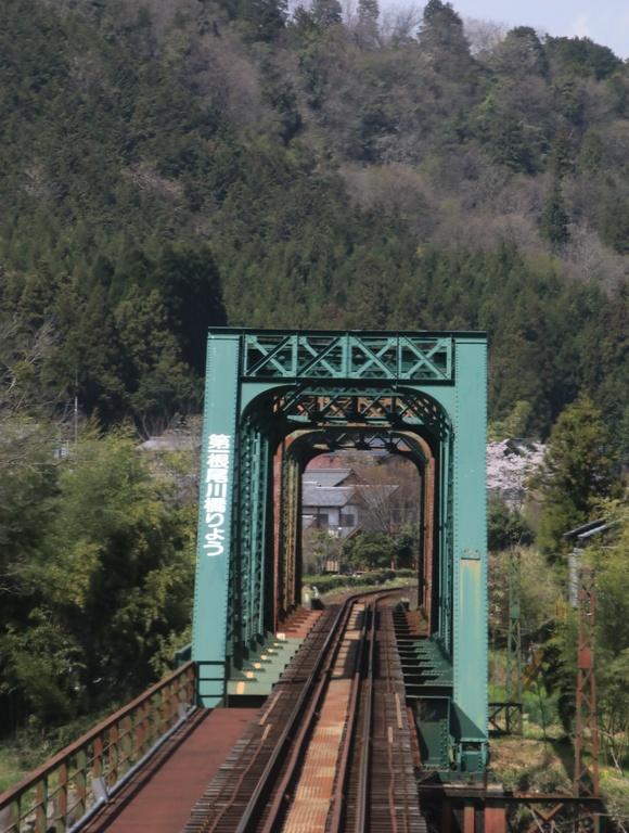 2017年 4月 樽見鉄道 春 ハイモ230_d0202264_4421480.jpg