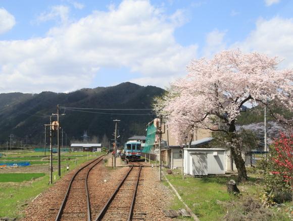 2017年 4月 樽見鉄道 春_d0202264_451192.jpg