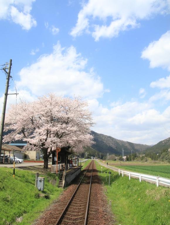 2017年 4月 樽見鉄道 春_d0202264_4513366.jpg
