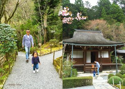 Kyoto trip  春の京都旅 洛北_e0253364_09205518.jpg