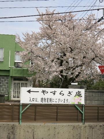 春は名のみ……♪ ♬_b0141773_21473336.jpg