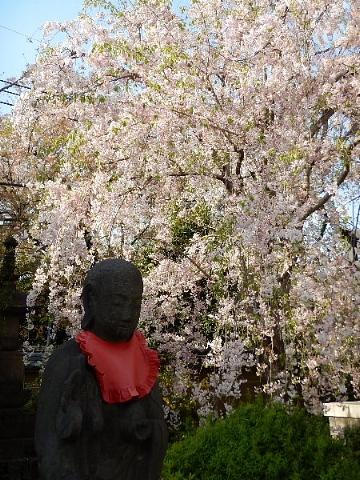 春は名のみ……♪ ♬_b0141773_21510806.jpg
