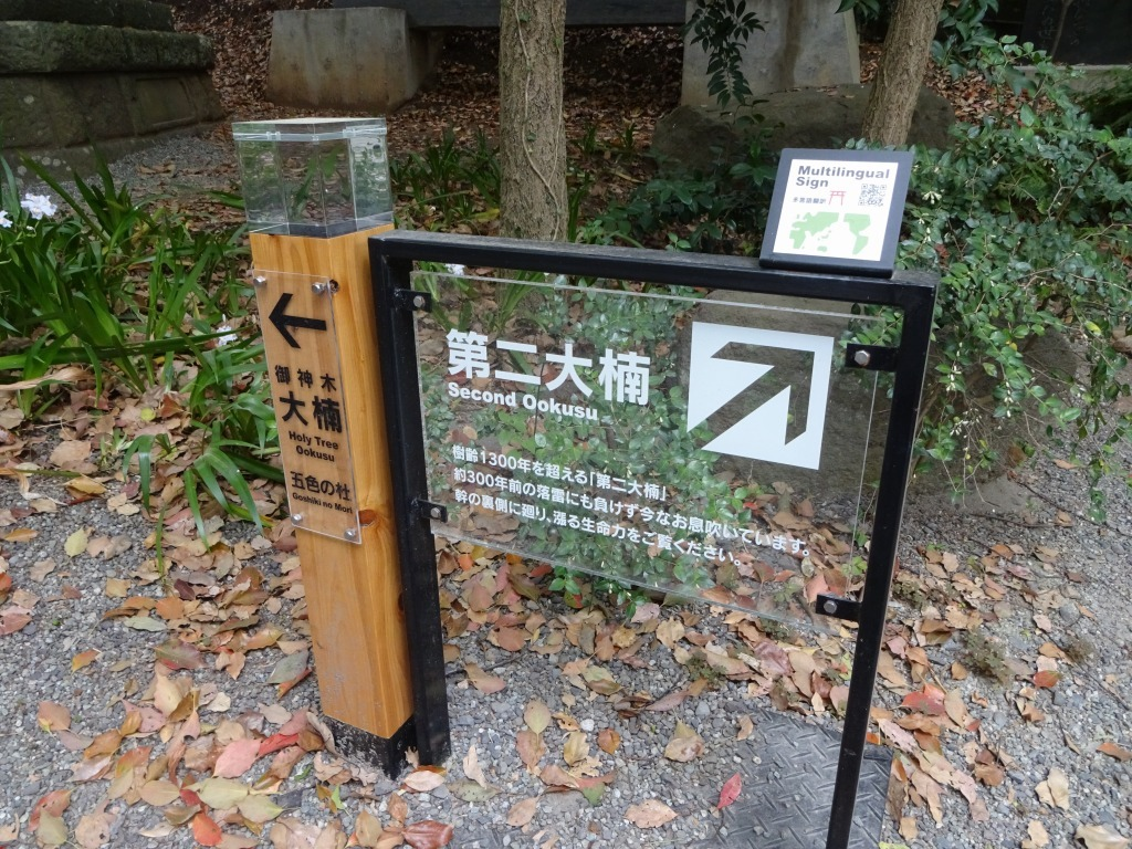 バースデーミステリーツアーは小田原~熱海だった!_d0061678_15593211.jpg