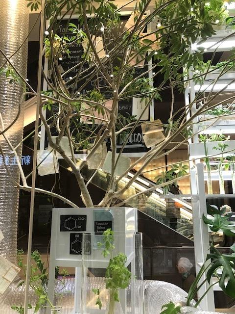 阪急百貨店 ショウウインドウ_f0204295_16182165.jpg