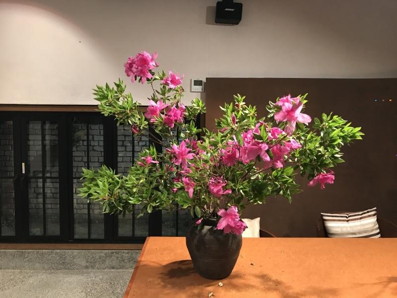 お客様から、お花を頂きました_d0177560_22221639.jpg