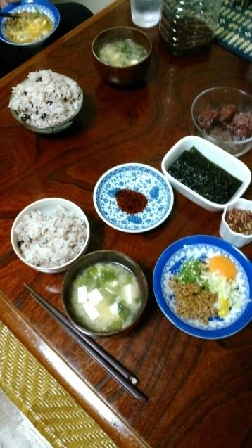 納豆定食と我が家のミニ盆栽_c0162773_00481314.jpg