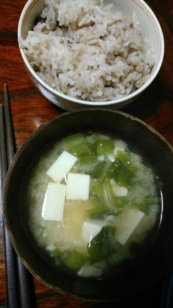 納豆定食と我が家のミニ盆栽_c0162773_00482143.jpg
