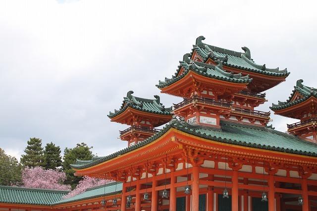京都 平安神宮の桜 2017_f0374092_21534871.jpg