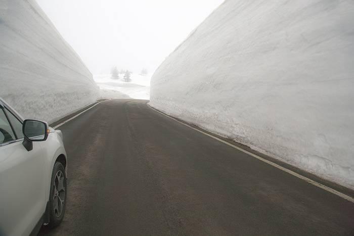 雪の回廊_c0077395_1953574.jpg