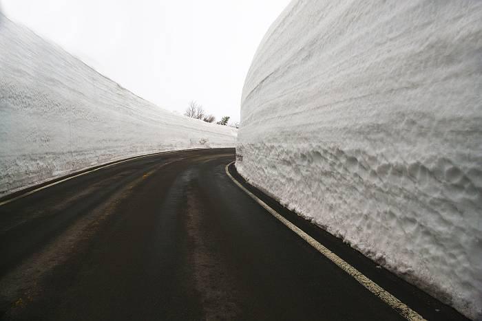 雪の回廊_c0077395_20667.jpg