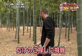 hutan bambu_a0051297_07422678.jpg