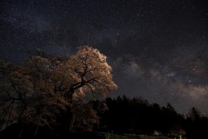 """満天の星空と """"要害櫻&天の川"""" そのⅢ_a0140608_08392905.jpg"""