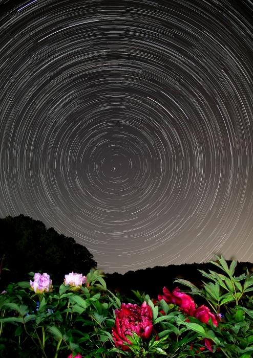 """""""星と牡丹"""" コンポジット編_a0140608_21303506.jpg"""