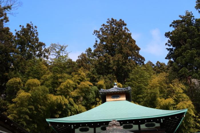 西生寺_e0169421_20402963.jpg
