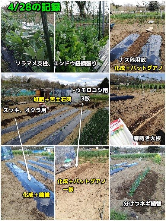 家庭菜園・備忘録_c0063348_07143450.jpg