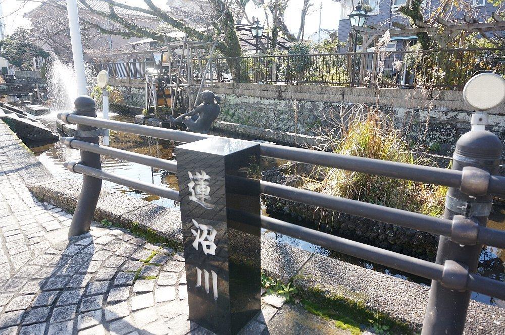 蓮沼川と源兵衛川_c0112559_08424778.jpg