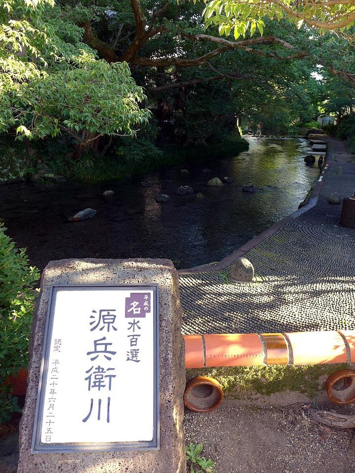 蓮沼川と源兵衛川_c0112559_09002938.jpg