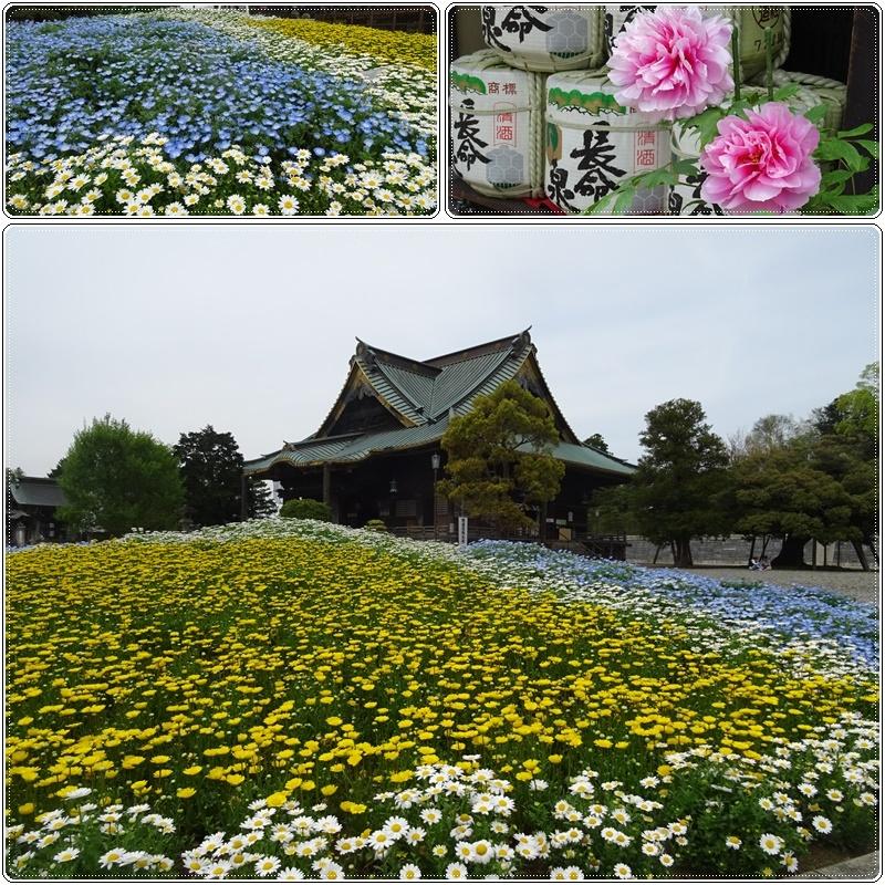 成田山でそば豆腐_b0236665_03574521.jpg
