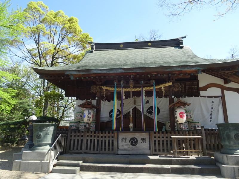 成田山でそば豆腐_b0236665_04273118.jpg