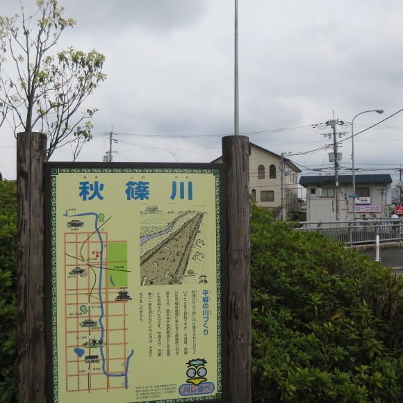 秋篠川の源流をたどる(歩いて)_c0001670_17045205.jpg