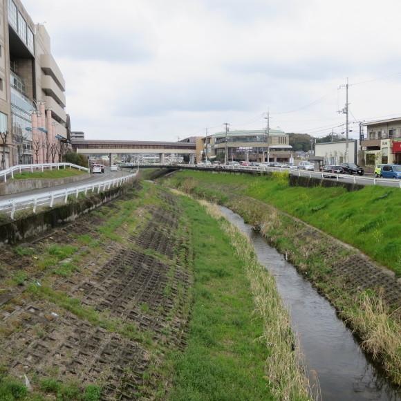 秋篠川の源流をたどる(歩いて)_c0001670_17050859.jpg