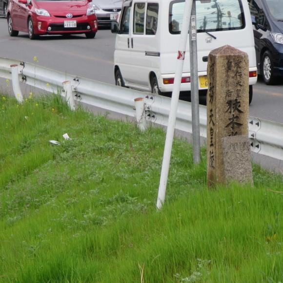秋篠川の源流をたどる(歩いて)_c0001670_17053463.jpg