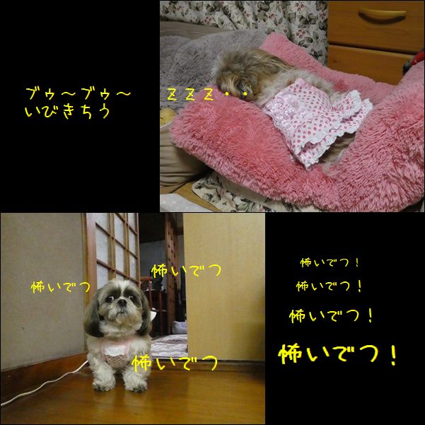 e0234881_21413344.jpg